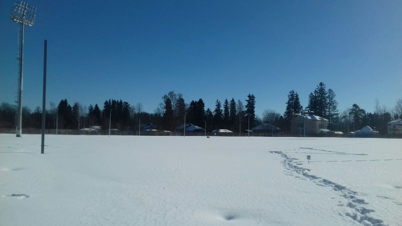 Сборная Англии просит оградить тренировочное поле в Зеленогорске шестиметровым забором - фото