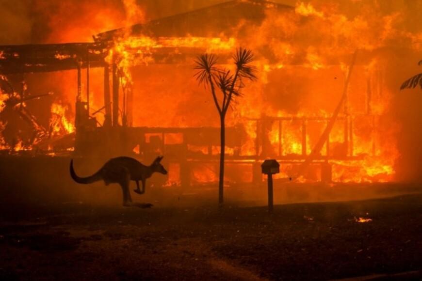 Квалификация Australian Open остановлена из-за лесных пожаров - фото