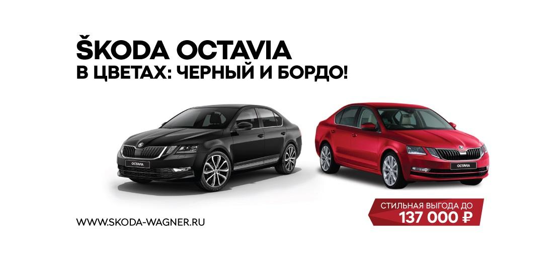 Выгода на ŠKODA OCTAVIA  в НЕОН, ПУЛКОВО и ТАЛЛИНСКИЙ-АВТО до 137 000 рублей! - фото