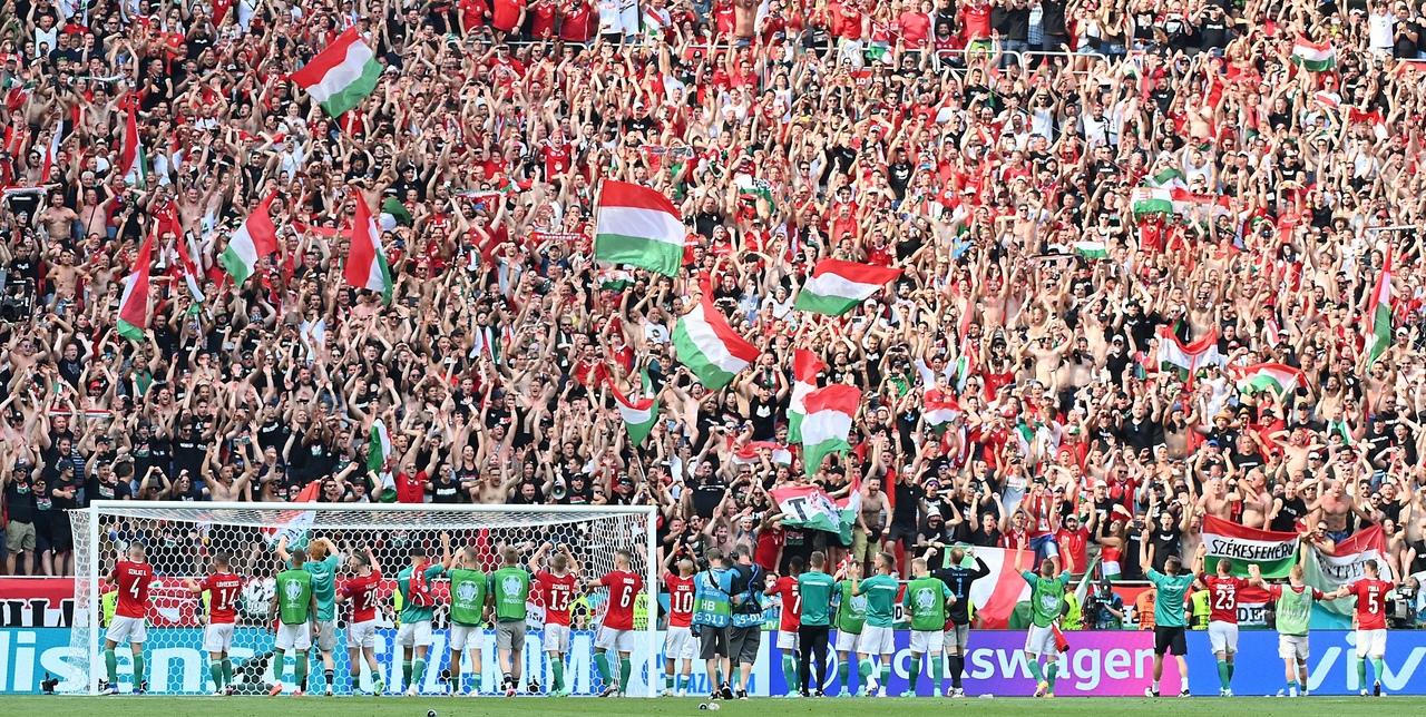 УЕФА расследует поведение венгерских болельщиков на матче с Францией - фото