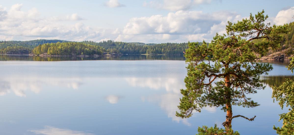 Почему «Серебряные коньки» нужно было писать о Финляндии - фото